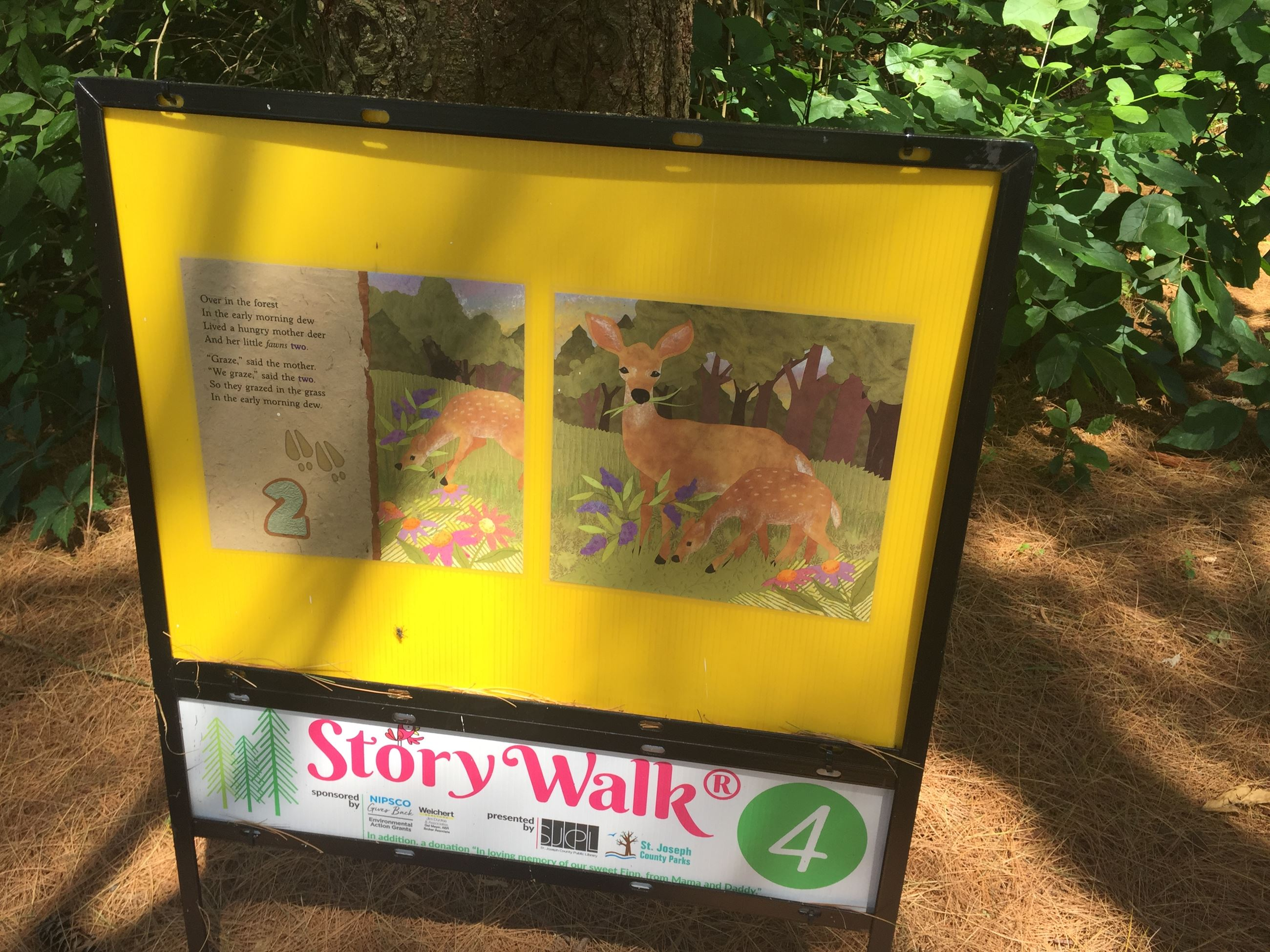 pages of a story book are displayed on a trail